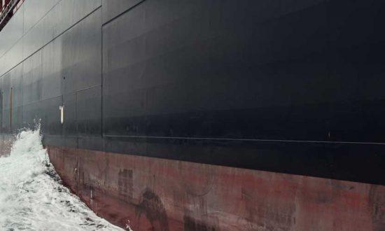 Ocean Freight Logistics